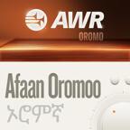 AWR Oromo / Afaan Oromoo / Oromiffa / ኦሮምኛ